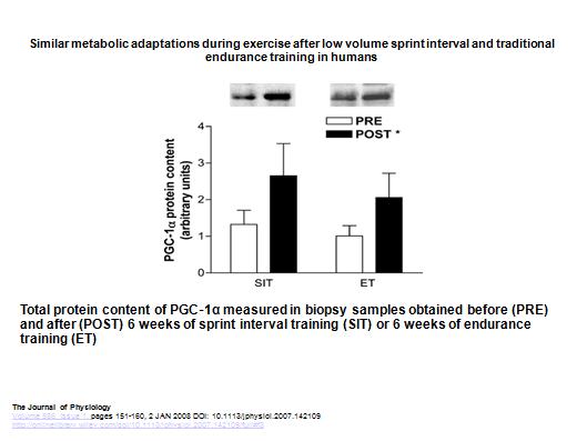 El entrenamiento de alta intensidad (SIT) puede ser incluso más eficaz que el entrenamiento de intensidad moderada/Baja para aumentar PGC1-a.